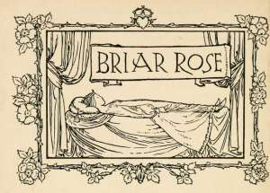 illustration of brar rose by robert a bell