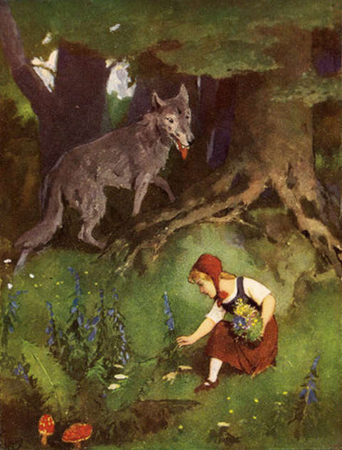 bad-wolf-looking-at-red-riding-hood-while-she picks-flowers