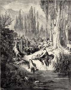 donkey skin illustration by gustave dore