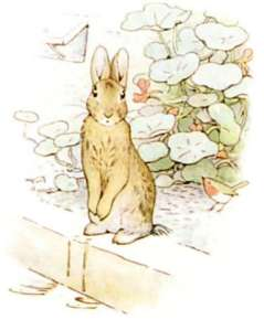 peter-rabbit-first-edition