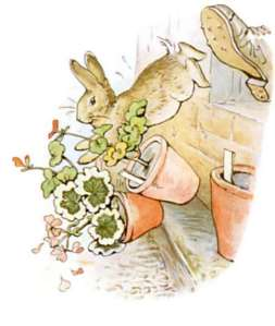 potter-peter-rabbit
