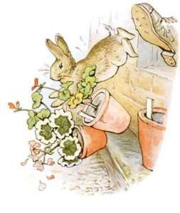 potter-peter-rabbit