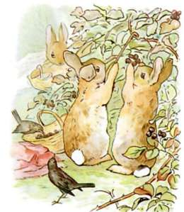 the-original-peter-rabbit