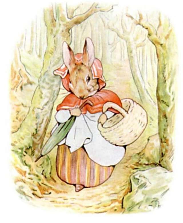 Beatrix Potter Peter Rabbit Top Illustrations by Top