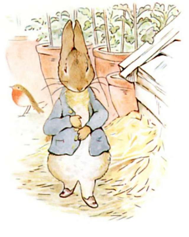 The World Of Peter Rabbit Beatrix Potter Childrens Books Complete Set of 23 NM