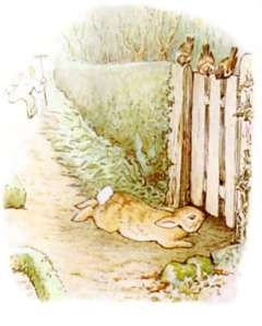 illustration-of-peter-rabbit