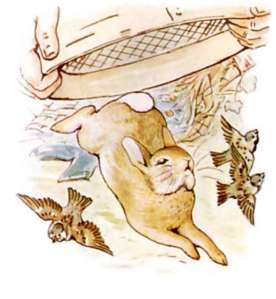 world-of-peter-rabbit