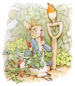 miss-potter-peter-rabbit