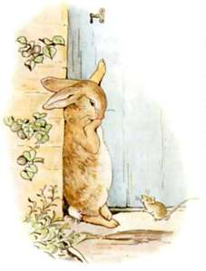 the-peter-rabbit
