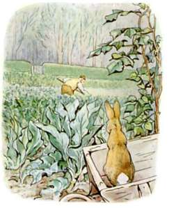 original-peter-rabbit