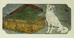 frederick richardson illustration of schippeitaro