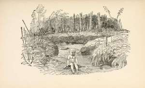 water-babies-illustrated-by-edward-linley-sambourne-37